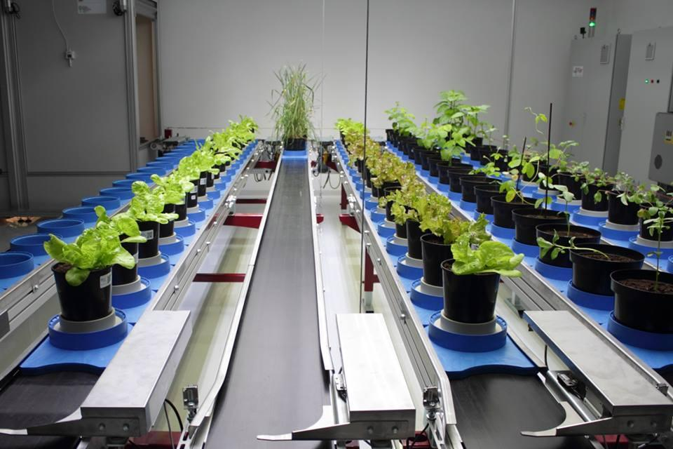 Fakulta agrobiológie a potravinových zdrojov