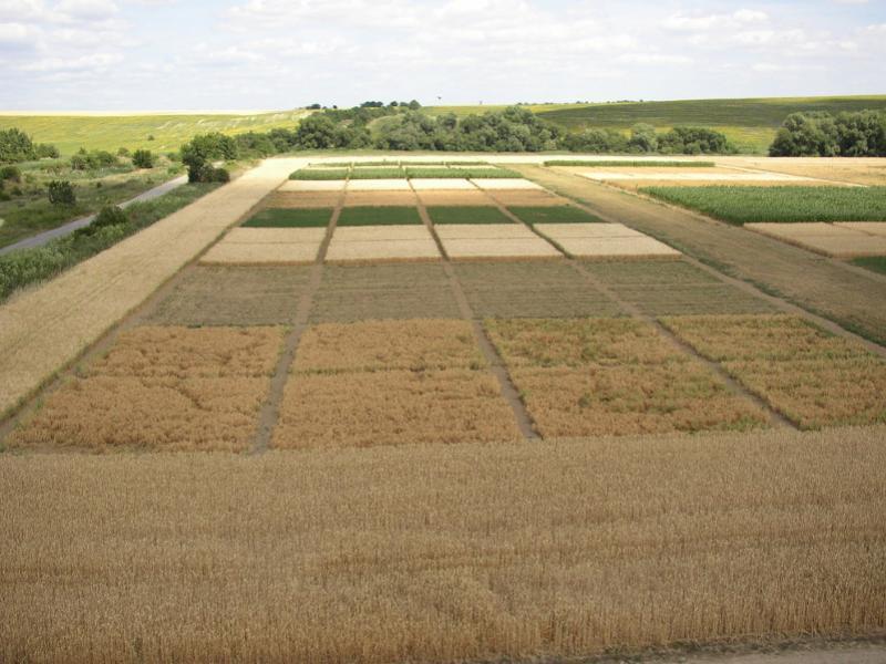 poľnohopodárstvo nitra