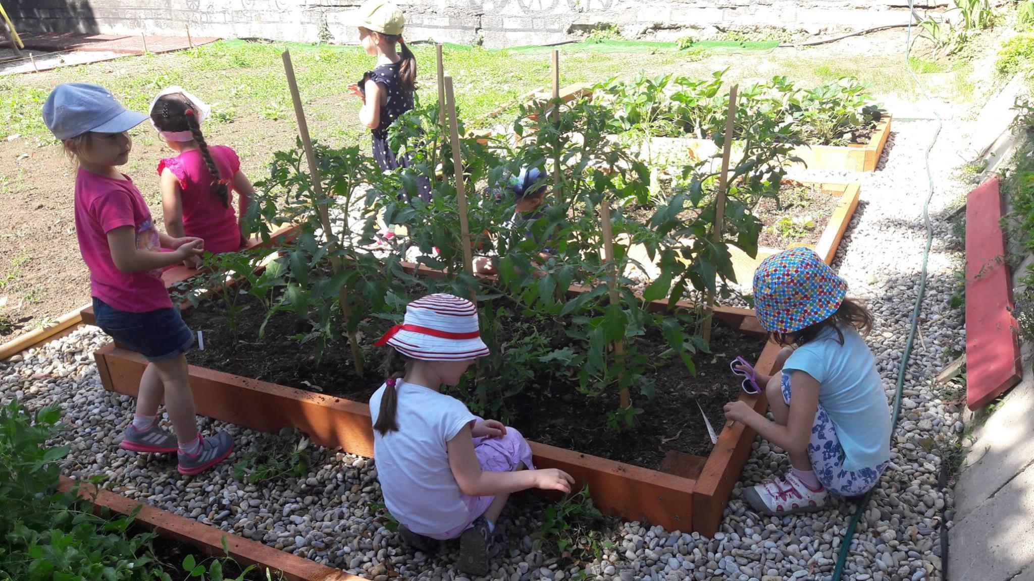 Detské Montessori centrum Nitra