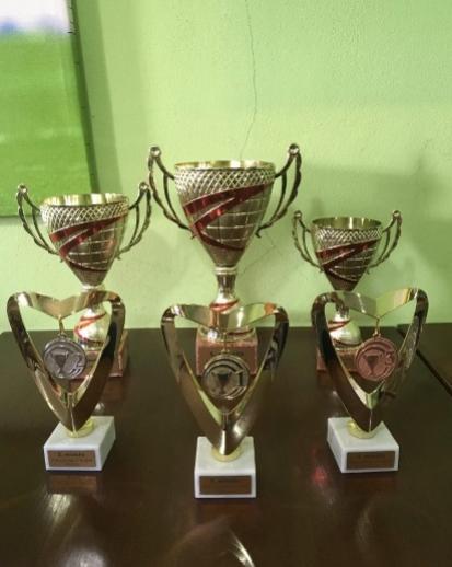fifa league turnaj