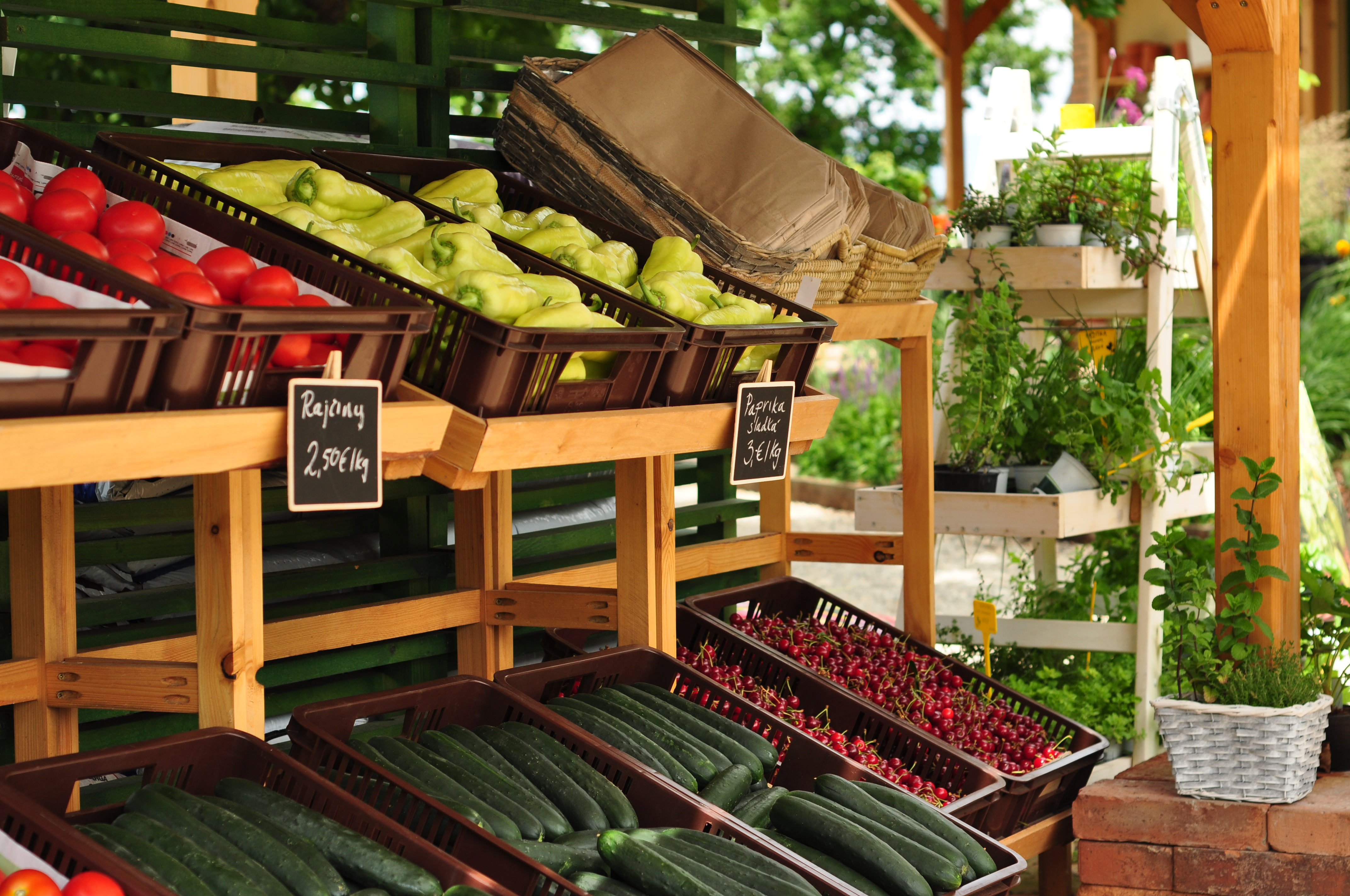 Čerstvé a poctivé ovocie a zelenina od slovenský - Gastro  07ab87dfaaa