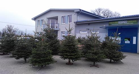 eb728d799 Vianoce v predajni ORGANIX Garden - Dielňa, záhradka | moja Nitra