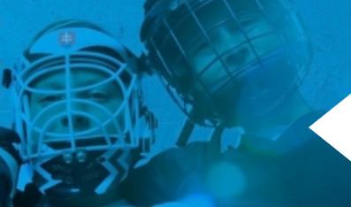 MJS v hokejbale - Katalóg firiem  35ff64013f